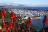 Dana Point Harbor Viewpoint
