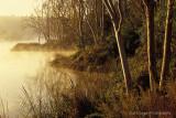 Misty Morning at Laguna Niguel Lake