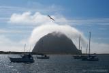 Misty Morro Bay Rock