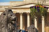 Trafalgar Square in the Spring