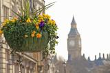 London in the Springtime