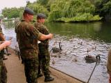 The British Army goes to the birds
