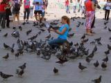 Feeding the wildlife in St Mark's Square, Venice