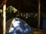 Tents under a roof