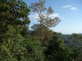 Mirador View Cerro Pirre