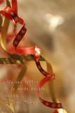 A Christmas Ribbon
