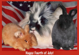 Happy Fourth of July USA!!!