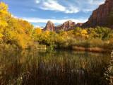 Nov '10 - Fall Colors
