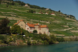 Againthe château de Rivaz from another angle to show the vineyard of Lavaux