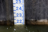 Spillway Gauge on May 24, 2009