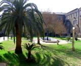 Inner Courtyard January 2, 2006