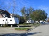 Neighborhood Status-four and one-half months after Katrina