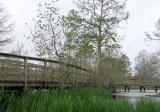 Lafreniere Park - Closed Due to Katrina