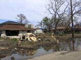 Seven Months After Katrina