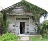 A Once Beautiful Shotgun-Style House