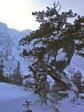 Winter Fun, 2007-08