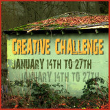 Creative Challenge for January 14 through 27th 2011
