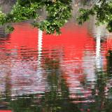 Carshalton Pond Reflection