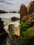 Green Clad Rocks