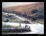 Snow on Exmoor