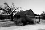 Spanish Oaks Cabins - 0313.jpg