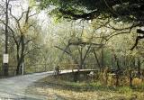 CR 353-Peach Creek, Gonzales County