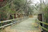 Miller Springs Bridge, Bell County