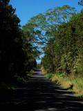 Stainback Highway