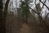 Holmberg Trails