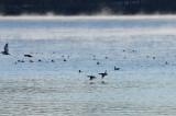 Lake Vadnais