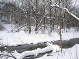 Creekside in Late Winter