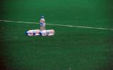 3 bottles on a green by Tabrizi