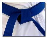 10th (tie): My new blue belt