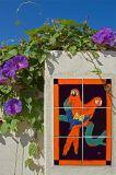 Spanish Hills Parrots  by Harvey Rawn