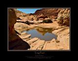 Triop Pool