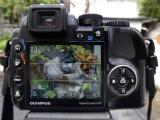 SP-570 Display 1.jpg