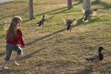 1/19: Duck!
