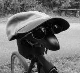 cycling fool (p:srw)
