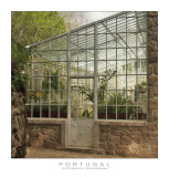 Greenhouse at Quinta da Regaleira