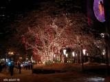 Noël au centre-ville de Montréal