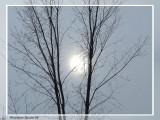 Soleil de neige