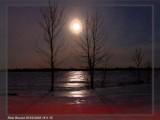 Éclipse de lune février 2008 - Moon eclipse february 2008