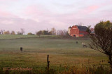 The Gregory Farm at Dawn