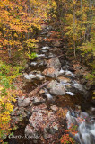 Adirondack Mountain Stream