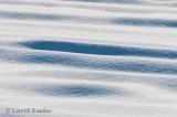 Snow Wrinkles