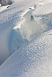 Snow Crevice