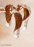 Drip, Drop, Frozen