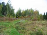 FWG autumn