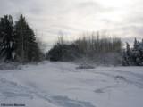 FWG in winter