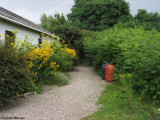 Pathway  to the garden